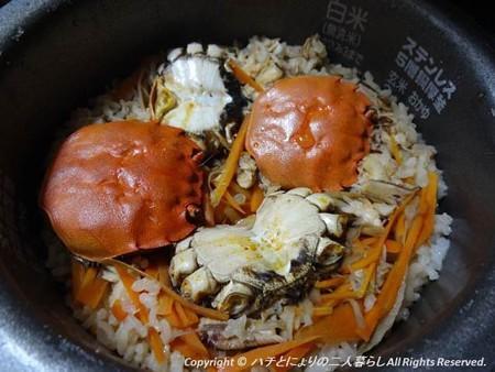2012-10-19モクズガニ炊き込みご飯1