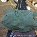 Photos: 2012-11-18カヤックツーリングin接岨湖 (23)