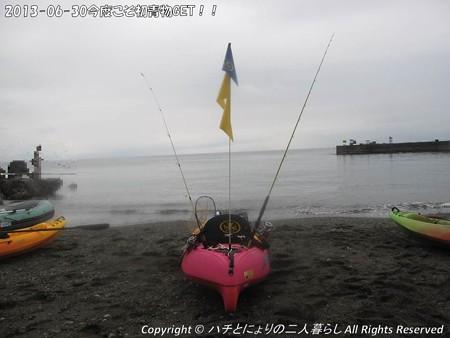 2013-06-30今度こそ初青物GET!! (1)