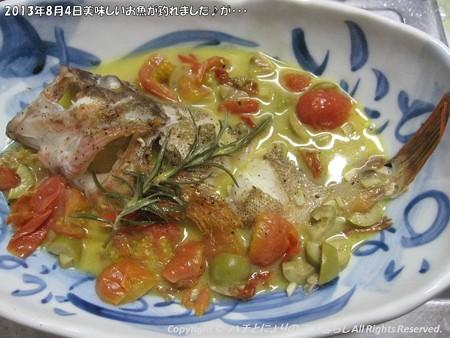 2013年8月4日美味しいお魚が釣れました♪が・・・ (6)