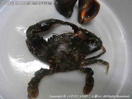 2013年8月25日忘れ物には要注意!! (5)