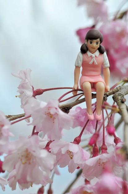 0406-花見のフチ子さん-02