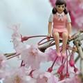 Photos: 0406-花見のフチ子さん-02