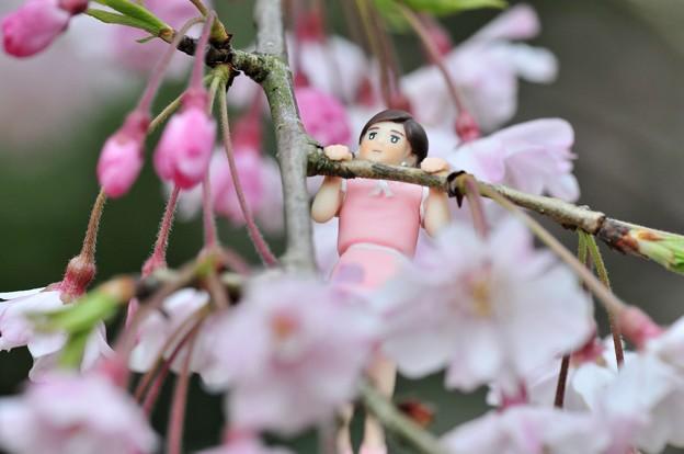 0406-花見のフチ子さん-07