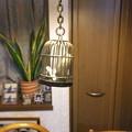 Photos: 妻にせがまれ買ったF900EXR  揺れるヘドウィック (籠の高さ約3cm)