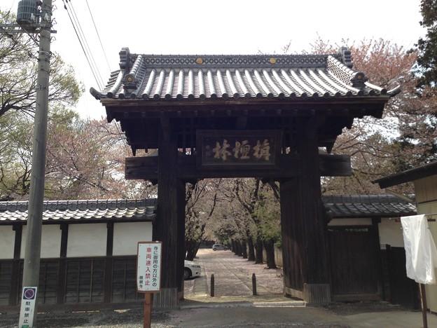 13.04.05.勝願寺(鴻巣市)