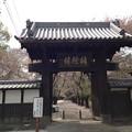 Photos: 13.04.05.勝願寺(鴻巣市)