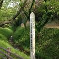 見沼通船堀西縁(さいたま市緑区)