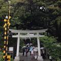 Photos: 御霊神社(鎌倉市)