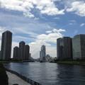 永代橋より中央大橋・聖路加