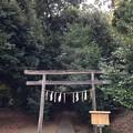 跡宮(鹿島神宮境外摂社)