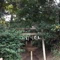 坂戸神社(鹿島神宮境外摂社)