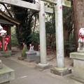 Photos: 御手洗稲荷神社の狐様(息栖神社境内社)