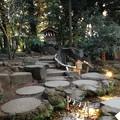 写真: 川越氷川神社 戌岩