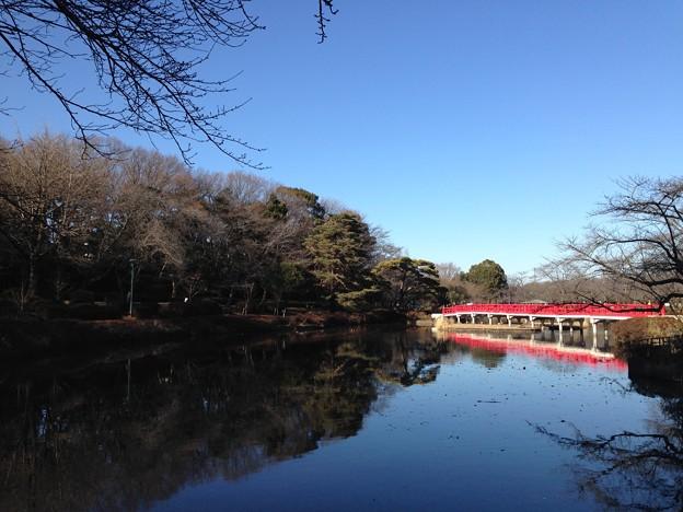 八ツ橋(さいたま市立岩槻城址公園)