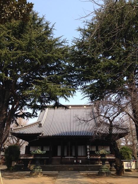 寛永寺(上野桜木)