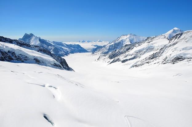 アレッチ氷河の画像 p1_19