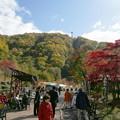 Photos: photo466