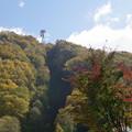 Photos: photo467