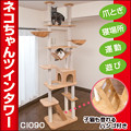 写真: CatTower1