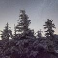 写真: 美ヶ原高原の夜