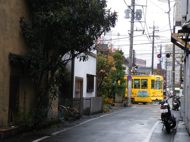 洗馬橋~新町間の踏切。_#kumamoto_#tram_#japan