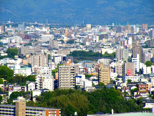 本妙寺山から眺めた子飼橋。