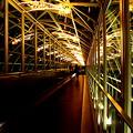 Photos: 光の架け橋