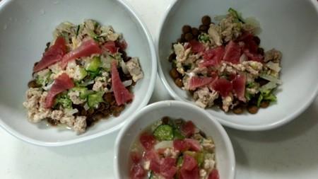 鰹と豚肉の冷製スープ仕立て
