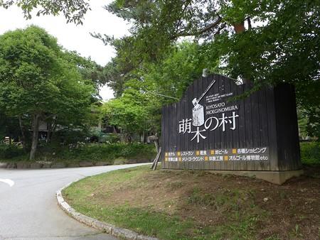 (4)萌木の村1