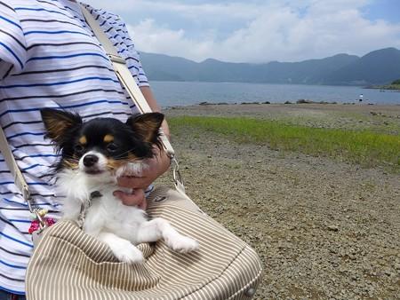 (17)本栖湖2