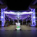 写真: 小倉駅のクリスマスイルミ2013