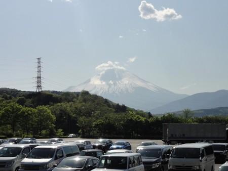 ayusawaPAnobori01