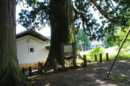 minekatasuwajinja04