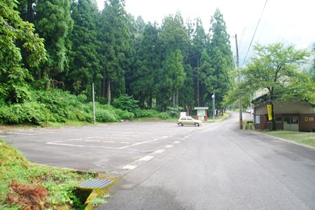 iwayaoosugi_katuyama01