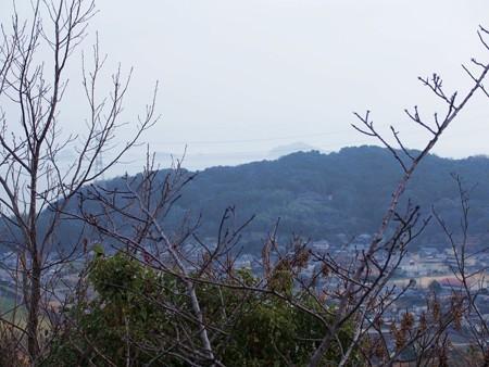 takabutoyama_amakusa14