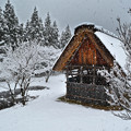 Photos: 真っ白川郷