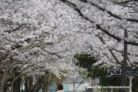 倉松公園03