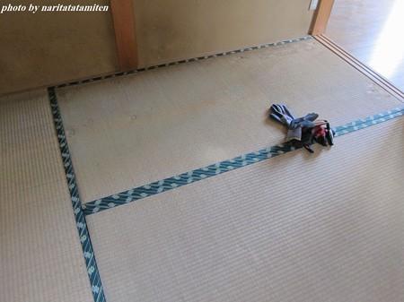 貸し家の畳06