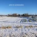 写真: 雪景色02