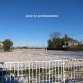 写真: 雪景色08
