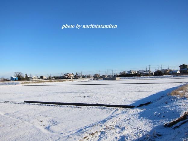 写真: 雪景色10