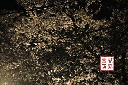 高橋家さんの桜06