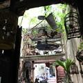 写真: IMG_8129ベトナム旅行・ハノイにて