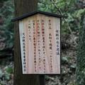Photos: IMG_9339大山登山と紅葉