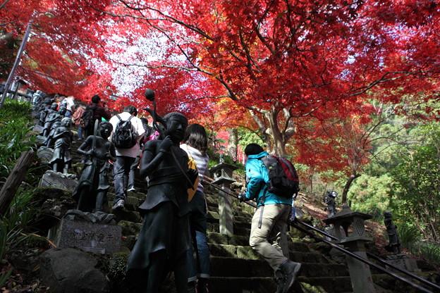 Photos: IMG_9356大山登山と紅葉