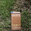 写真: IMG_0416台湾陽明山_海芋祭と七星山登山