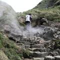 写真: IMG_0424台湾陽明山_海芋祭と七星山登山