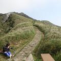 写真: IMG_0427台湾陽明山_海芋祭と七星山登山