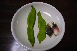 120906-1 なた豆とミョウガ